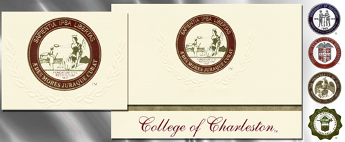 Platinum College-of-Charleston Graduation Cards